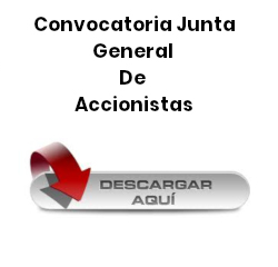 Descarga Junta General de Accionistas